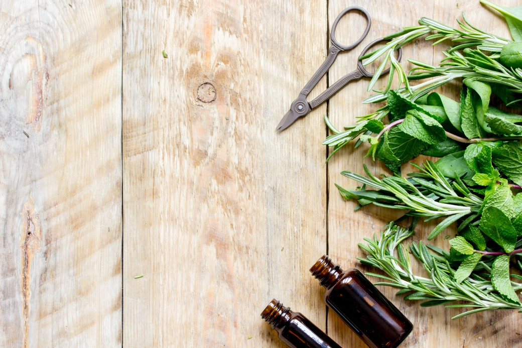 spicy fresh herbs on the wooden background
